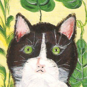 Mészáros néni Bonifác cicája